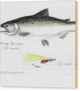 King Salmon Or Chinook With Chinook Candy Fly Wood Print