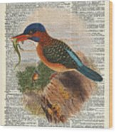 Kingfisher Bird With A Lizard Illustration Over A Old Dictionary Wood Print