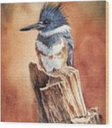 Kingfisher I Wood Print