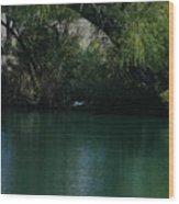 Kingfisher In Flight Wood Print