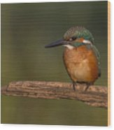 Kingfisher On Sunrise Wood Print