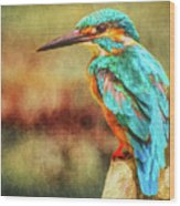 Kingfisher's Perch 2 Wood Print