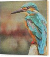 Kingfisher's Perch Wood Print