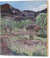 Kings Canyon II Wood Print