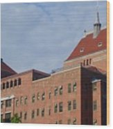 Kings County Hospital Center, Brooklyn Wood Print