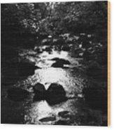 Kintyre Plus Seventeen Wood Print