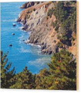 Kirby Cove San Francisco Bay California Wood Print