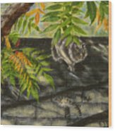 Kirby Stalking Wood Print