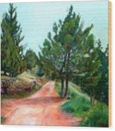 Kirjat Smona      1999     Wood Print