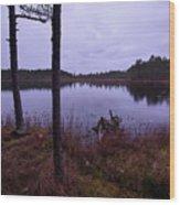 Kirkas Soljanen At Dawn Wood Print