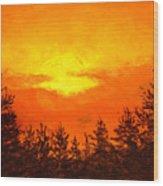 Kissed Pines Wood Print
