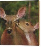 Kisses For Mom Wood Print