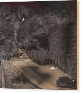Kissing Between Fights Wood Print