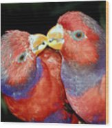 Kissing Birds Wood Print