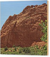 Kissing Camels At The Garden Of The Gods Wood Print