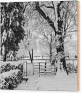 Kissing Gate In The Snow Wood Print