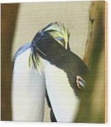 Kissing Pennguins Wood Print