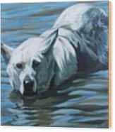 Kita Swimming The Platte Wood Print