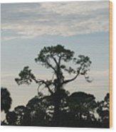 Kite In The Tree Wood Print