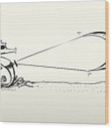Kite Surfing Sea Horse Shape Lines Wood Print