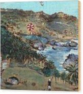 Kites At Bathsheba Wood Print