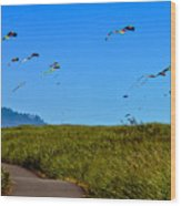 Kites Wood Print by Robert Bales
