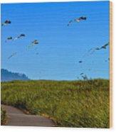 Kites Wood Print