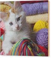 Kitten In Yarn Wood Print