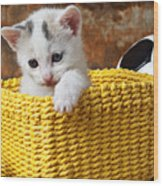 Kitten In Yellow Basket Wood Print by Garry Gay