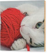 Kitten Playing With Red Ball Of Yarn Wood Print