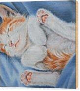 Kitten Sleeping Wood Print