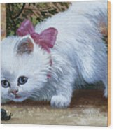 Kitten With Snail And Ball Wood Print