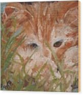 Kitty Adventures Wood Print