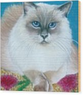 Kitty Coiffure Wood Print