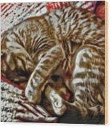 Kitty Dreams Wood Print