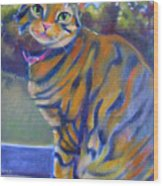 Kitty In The Window Wood Print