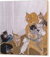 Kitty Litter II Wood Print