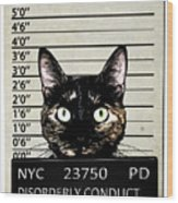 Kitty Mugshot Wood Print