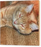 Kitty Relaxing Wood Print