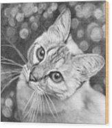 Kitty The Cat Wood Print