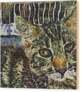 Kitty Vangoghed Wood Print