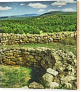 Kiva And View Pecos Ruins New Mexico Wood Print