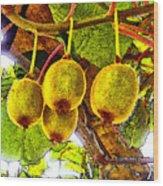 Kiwis In Kiwiland Wood Print