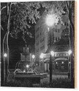Kleman Plaza At Night Wood Print