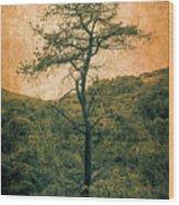 Knarly Tree Wood Print