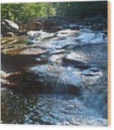 Knee Deep In Mountain Water Wood Print