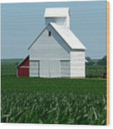 Knee High By The Fourth Of July Wood Print
