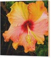 Knightsbridge Hibiscus Wood Print