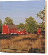 Knox Farm 5194 Wood Print
