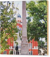Knoxville Old Courthouse Grounds Wood Print